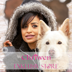 Chriwen Store